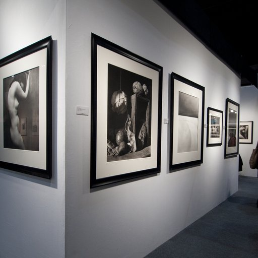 New and Old Photography Alike Puts on a Vivavious Display at the 2014 AIPAD Fair