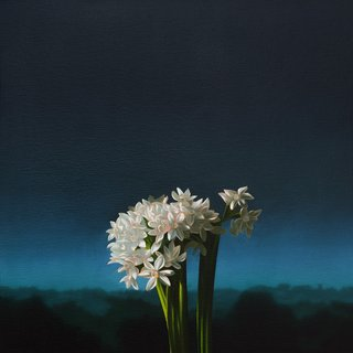 Narcissus Against Evening Sky art for sale