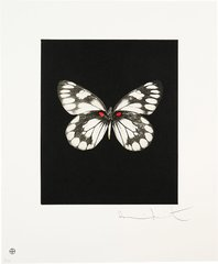 Regeneration, by Damien Hirst