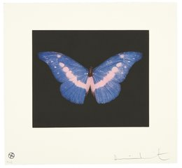 To Belong, by Damien Hirst