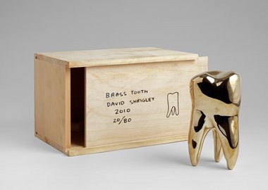 David Shrigley - Brass Tooth