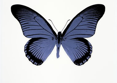 Damien Hirst - The Souls IV - Cornflower Blue/Raven Black