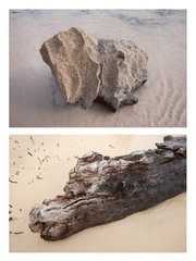 COMPOSITE WOOD & ROCK, by Luciano Fileti