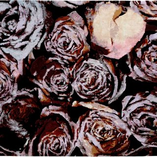 Wine and Roses art for sale