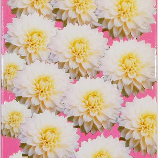 White Dahlias on Pink art for sale