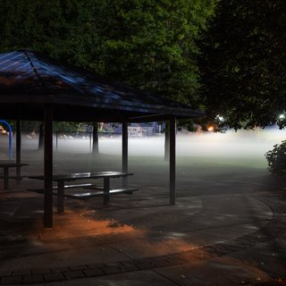 Foggy Park art for sale
