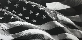 Untitled (Flag), by Robert Longo