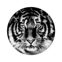 Tiger (Set of 2 Plates), by Robert Longo