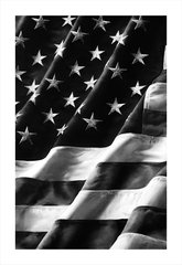 Untitled (Old Glory), Left Side, by Robert Longo