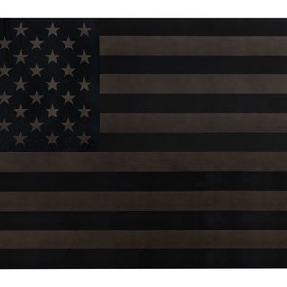 Barras y estrellas negras (Black Star Spangled Banner) art for sale