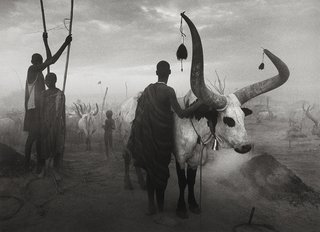 Dinka group at Pagarau, Southern Sudan, by Sebastião Salgado