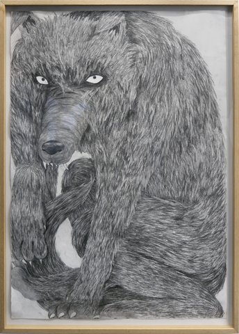 Silas Inoue - Wolf Pack #2, Work on Paper