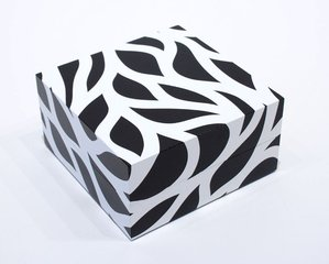 Loopy Doopy, Box, by Sol LeWitt