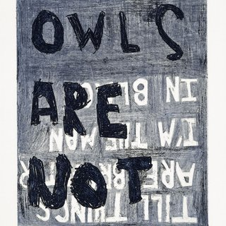 Owls are not art for sale