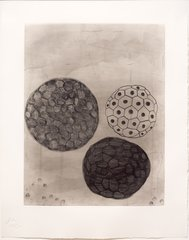 Album-Portfolio Etching #5, by Terry Winters