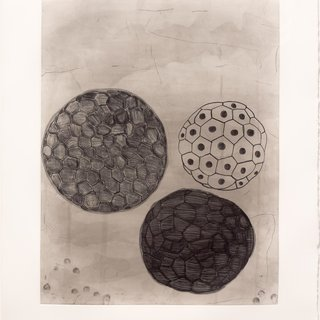 Album-Portfolio Etching #5 art for sale