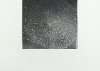 Vija Celmins - Untitled (Web 2)