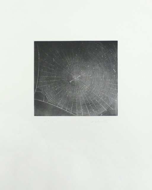 Vija Celmins - Untitled (Web 2), Print