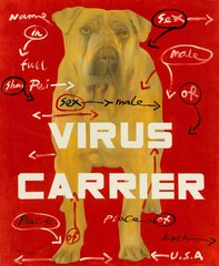 Virus Carrier, by Wang Guangyi