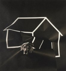 Dog House, by William Wegman