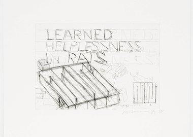 Bruce Nauman - Learned Helplessness in Rats
