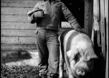 "Dennis Stock - USA. Fairmount, Indiana. 1955. James Dean on the farm of his uncle Marcus Winslow, posing with a pig asking himself ""do I belong to the animals, to the pigs, the cattle, or the goats?"""