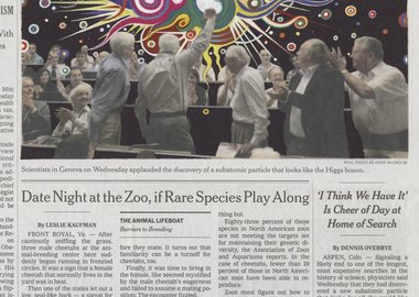 Fred Tomaselli - July 5, 2012