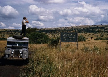 George Rodger - Uganda. 1958. Queen Elizabeth National Park. 'Elephants have Right Of Way' sign on crater lake track in the Queen Elizabeth National Park.