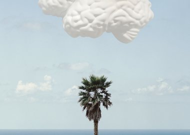 John Baldessari - Brain/Cloud (With Seascape and Palm Tree)