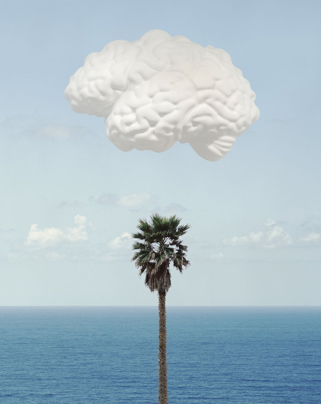 John Baldessari, Brain/Cloud (With Seascape and Palm Tree)