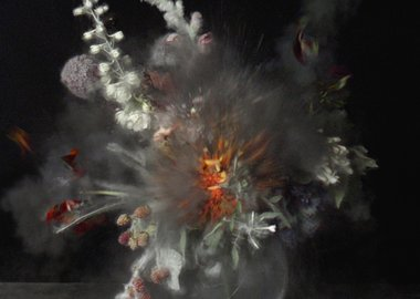 Ori Gersht - Time After Time, Untitled 16