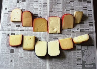 Phoebe Washburn - Untitled (cheese photograph)