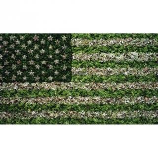 American Flag art for sale