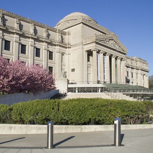 Arnold Lehman on the Brooklyn Museum's Future