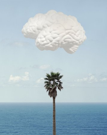 Baldessari Brain Cloud