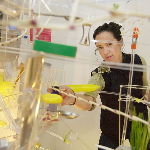 Sarah Sze on Inventing a New Mode for Sculpture