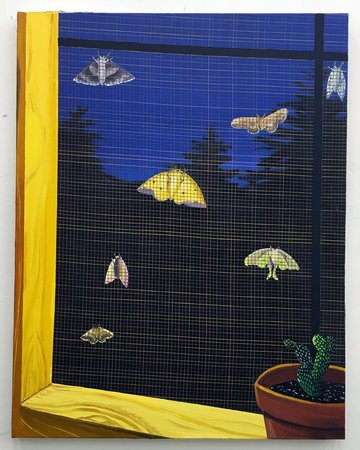 NIKKI MALOOF An Eclipse of Moths, 2016