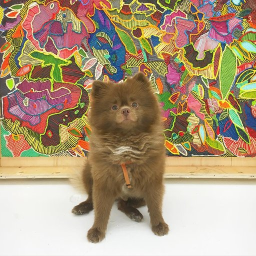 7 Art Scene Dogs to Follow on Instagram