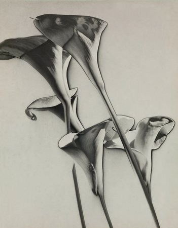 Man Ray, Untitled, 1930