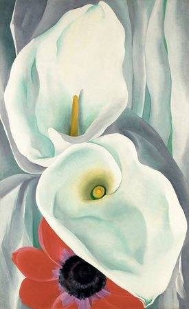 Georgia O'Keeffe, Calla Lilies with Red Anemone, 1928