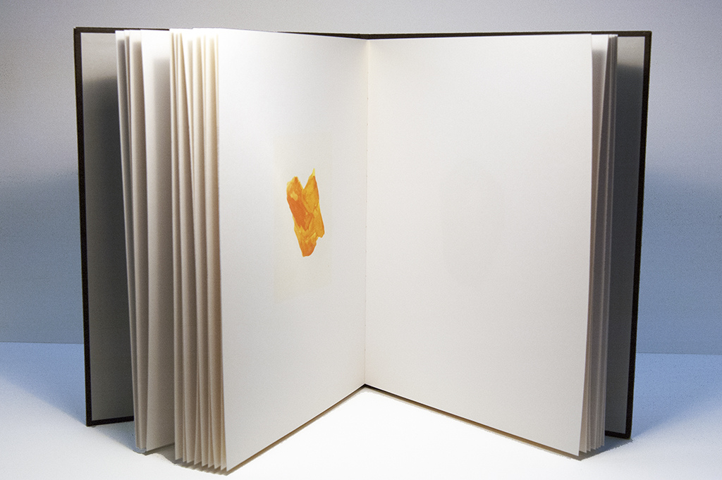 roni horn book