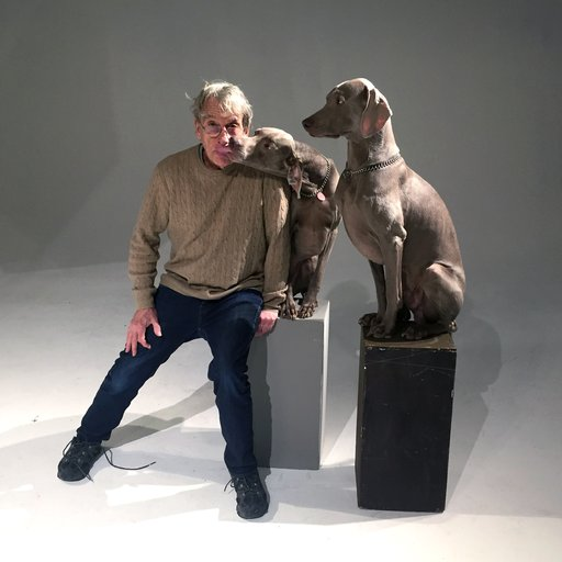 From California Conceptualism to Dogs in Wigs: A Studio Visit with William Wegman