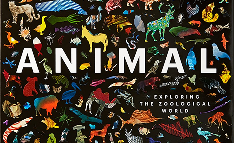 For the Love of Animals: Artistic Renderings of the Zoological World Throughout History