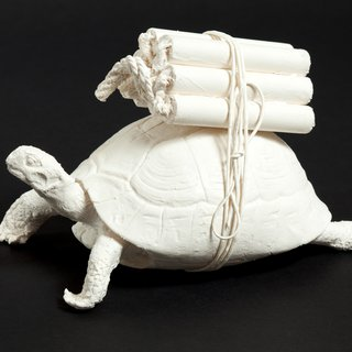 Tortue art for sale