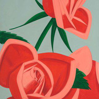 Rose Bud art for sale