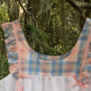 House dress hanging in live oak II. art for sale