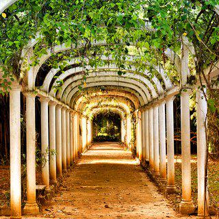 Jardim Botanico Path art for sale