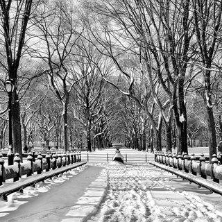 The Mall in Winter, Central Park art for sale