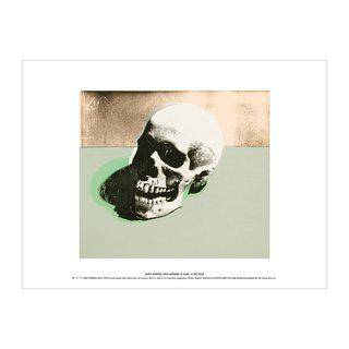 Skull (white) art for sale