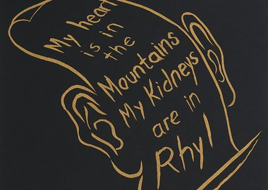 work by Bedwyr Williams - My heart is in the Mountains My Kidneys are in ...